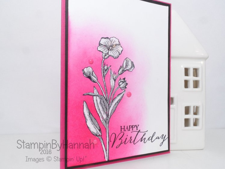 Birthday card using Butterfly Basics from Stampin' Up! Happy Birthday Pink Card