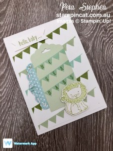 Stampin' Cat CI39 Pick a Pennant A Little Wild Stampin' Up!
