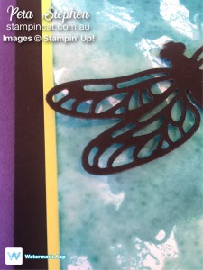 Stampin' cat CI15 Detailed Dragonfly