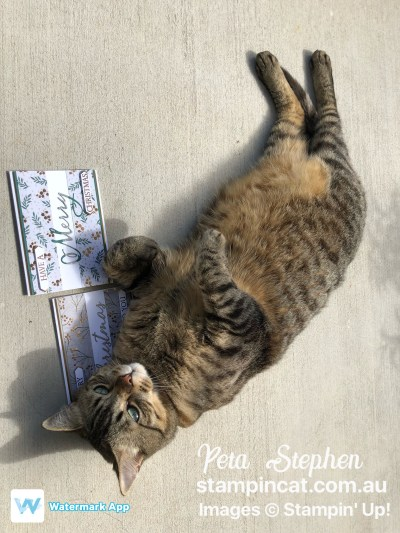 Stampin' Cat ESAD Joyous Noel Merry Christmas To All Stampin' Up!
