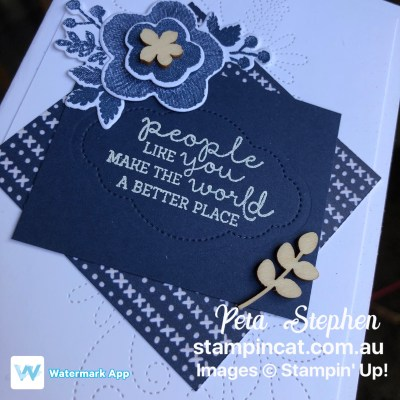 #stampin_cat #esad #needlepointnook #butterflyelements #sab #diy #handmadecard #stampinup