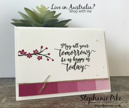 Colourful Seasons using Berry Burst www.stampingwithsteph.com.au