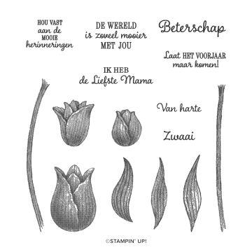 tijdloze tulpen, timeless tulips, tulp, stampin up, stampin treasure