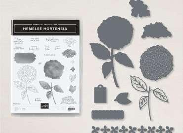 hemelse hortensia, garden wishes, stampin up, stampin treasure, bundle, bundel, productpakket