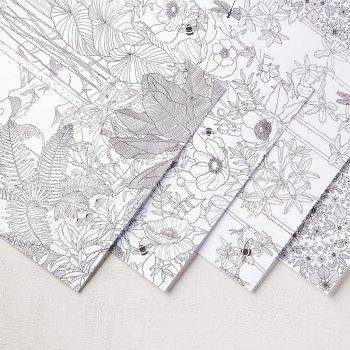 Inside the Lines Designer Series Paper, Stampin' Up!