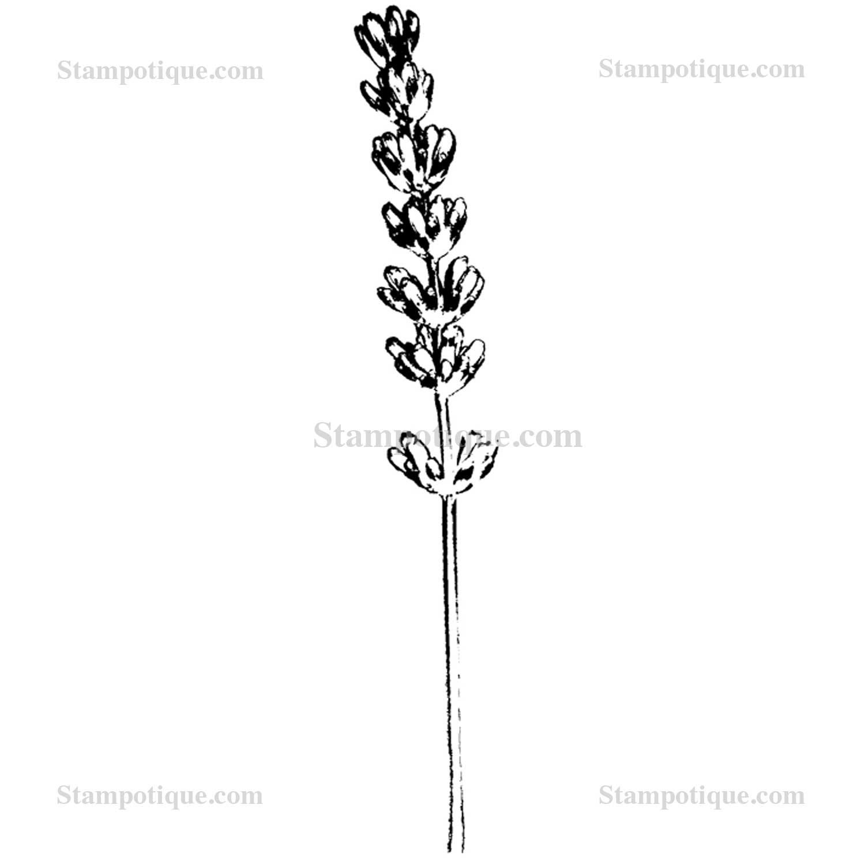 Lavender Ribbon Designs