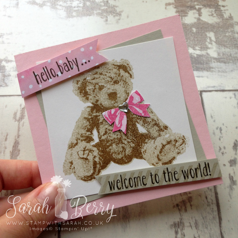 Baby Bear close up for Hello! Annual Catalogue Week 6