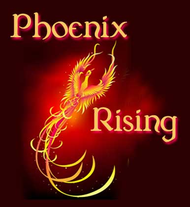 Wish all this cool art for Phoenix existed back in the day!