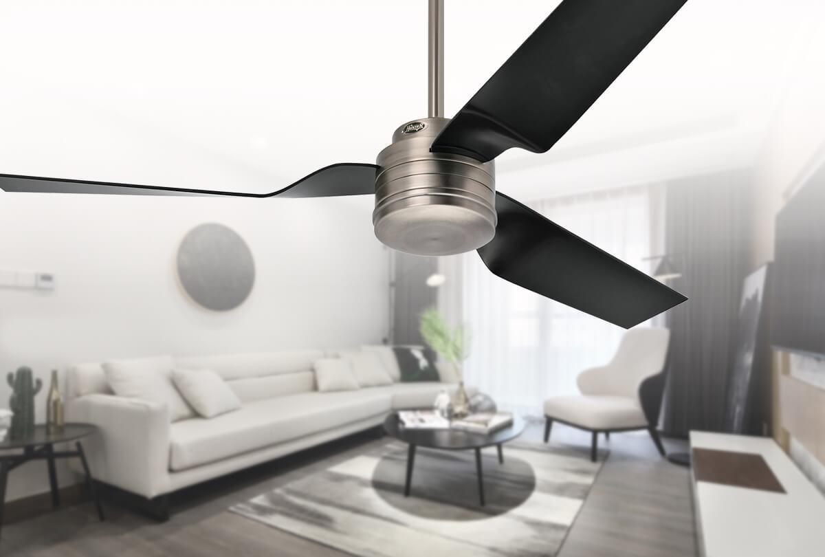 HUNTER : ventilateur CABO FRIO