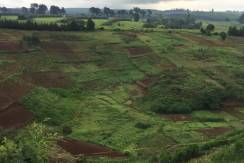 1 acre for Sale in Limuru