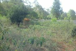 ¼ Acre Land for Sale in Karen