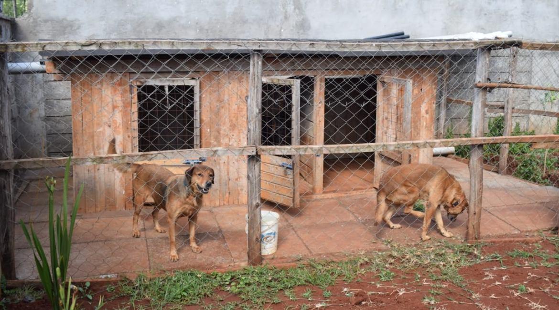 5 Bedroom Maisonette To Let in Kitisuru 14