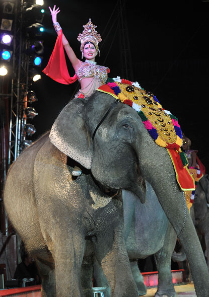 Celebrities back MPs over ban on circus animals London