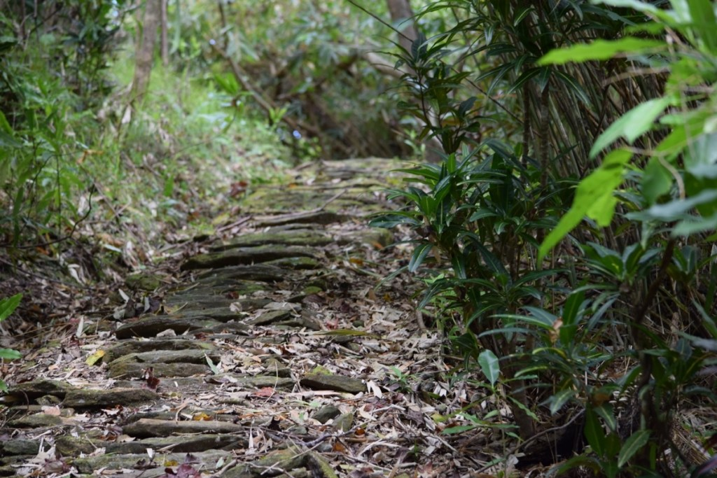 Explore the Land of Stone Money - Stone Path in Yap, Federated States of Micronesia