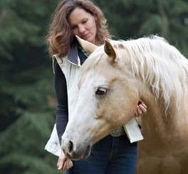 increase your confidence with horses