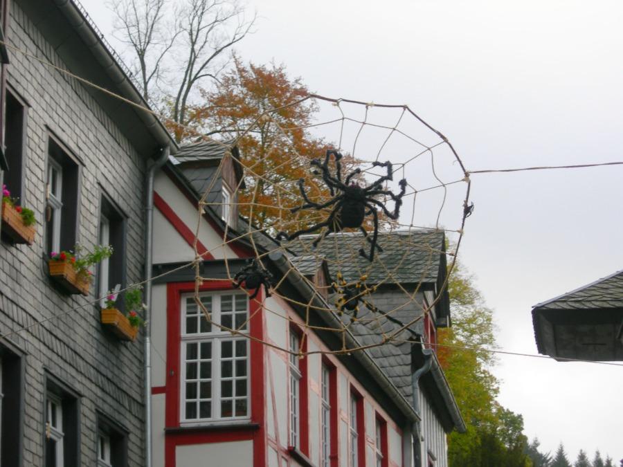 Stedentrip Monschau
