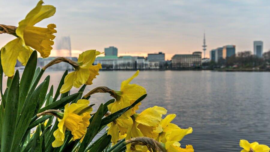 gratis Hamburg-tip: parken