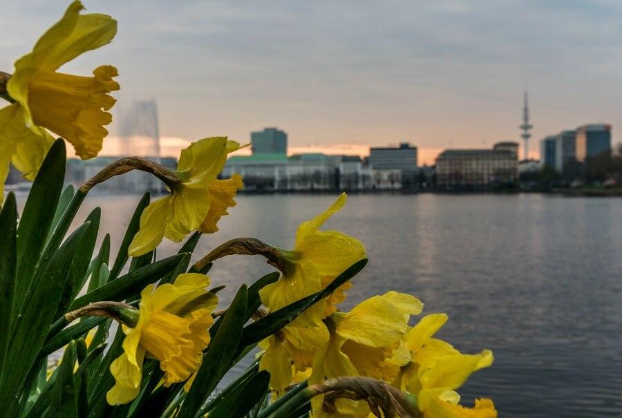 Lentebezoek aan Hamburg april