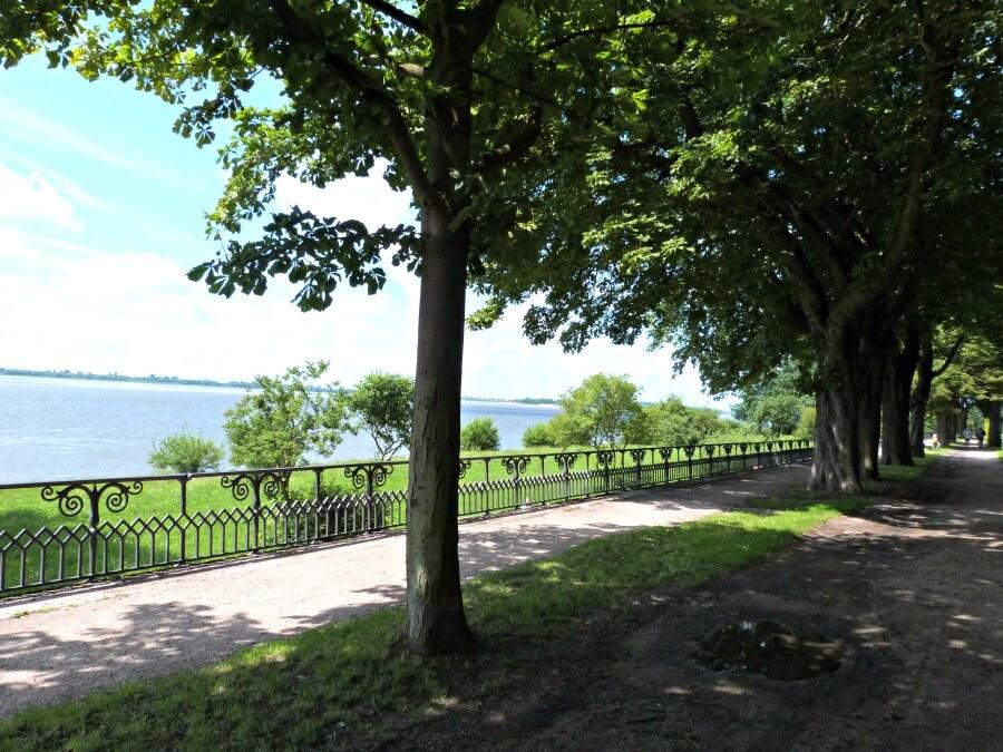 Relaxen aan de Elbe