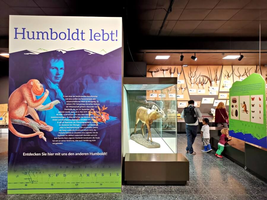 Insider tips Hamburg: CeNak museum