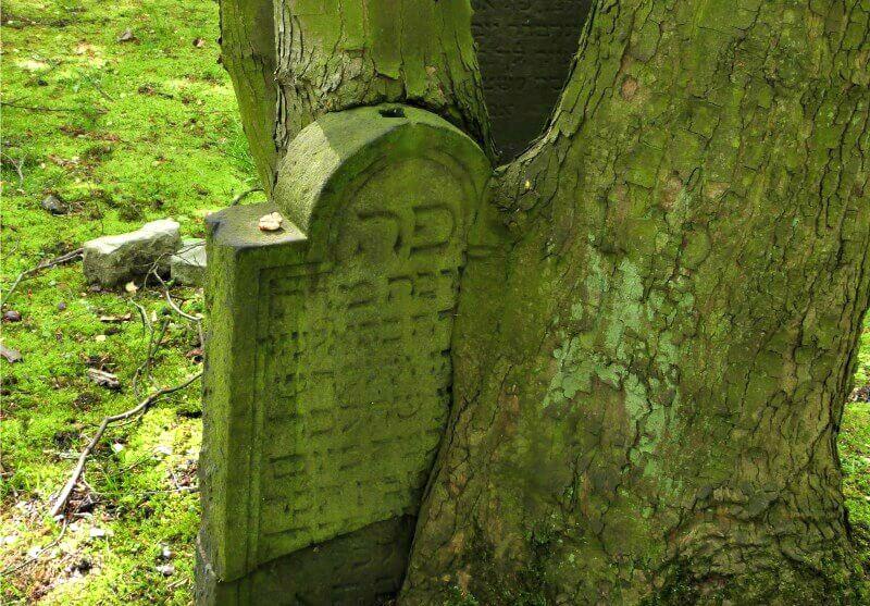 De Joodse begraafplaats in Altona is een van de oudste in Europa