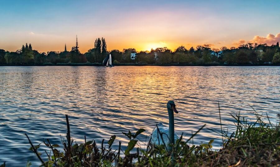Zonsondergang aan de Alster | Standort Hamburg