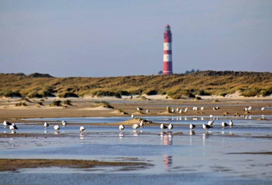 Vakantie op Amrum: strand