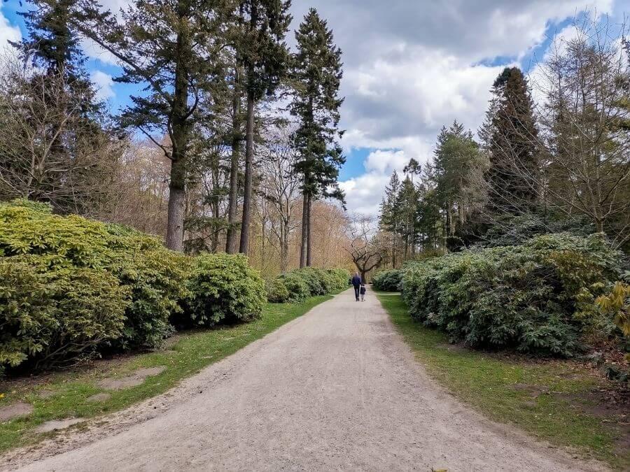 Altonaer Volkspark: lekker wandelen in het bos