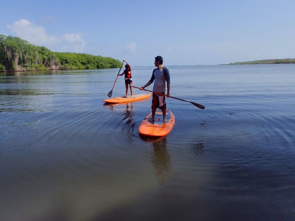 Stand Up Paddle Lagoon