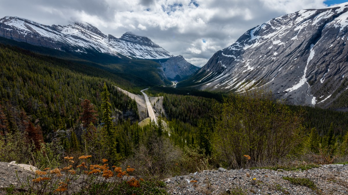 Icefields Parkway in Early June 6