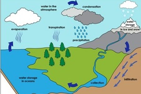 Simple picture of water cycle path decorations pictures full cycle the importance of water a lot of diagrams explaining the water cycle make it look so difficult to understand but here is a simple diagram ccuart Gallery