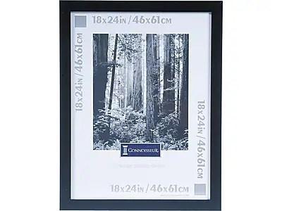 picture frames document frames staples