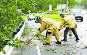 BRUCE ASATO / BASATO@STARADVERTISER.COM Firefighters clear the roadway at the on-ramp to the Pali Highway in Kaneohe on Wednesday. Pali Highway will be closed in both directions for several hours on New Year's Day for the removal of two trees on slopes above.