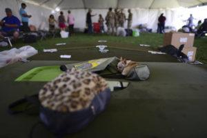 ASSOCIATED PRESS                                 A chihuahua dog sleeps on a cot in a tent city for hundreds of people displaced by earthquakes in Guanica, Puerto Rico, on Tuesday.