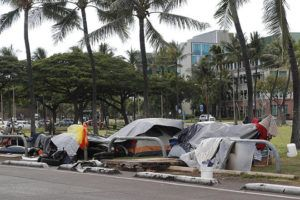 GEORGE F. LEE / Feb. 7                                 The number of Oahu homeless people who died on the streets continued to climb in 2019. Here, a homeless encampment is seen along Ohe Street at Kakaako Waterfront Park Mauka in February.