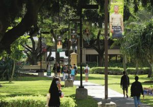 JAMM AQUINO / JAQUINO@STARADVERTISER.COM                                 The University of Hawaii officially released its latest biennial student survey on sexual harassment and gender-based violence, issues that are prevalent among college students nationwide. People walked the campus Friday at UH Manoa.