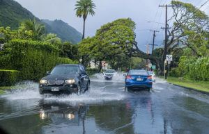 DENNIS ODA / DODA@STARADVERTISER.COM Cars drive through water on University Avenue near East Manoa Road after a short heavy downpour in Manoa today.
