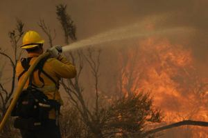 ASSOCIATED PRESS                                 Jesse Vasquez, of the San Bernardino County Fire Department, hoses down hot spots from the Bobcat Fire on Saturday in Valyermo, Calif.