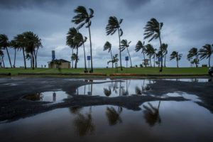 STAR-ADVERTISER                                 The weather at Haleiwa Beach Park, in Feb. 2020, was windy, rainy and cold.