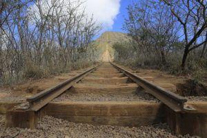 JAMM AQUINO / JAN 11.                                 The tracks at Koko Crater Trail in east Honolulu.