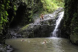 STAR-ADVERTISER / JUNE 2014                                 A hiker jumps off the rocks into the pond at Maunawili Falls in Windward Oahu in 2014.