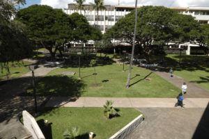 JAMM AQUINO / 2020                                 People walk the campus at the University of Hawaii Manoa.