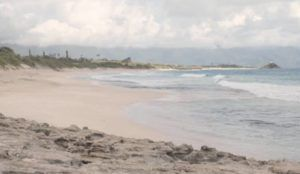 COURTESY U.S. MARINE CORPS                                 A surfer was believed to be bit by a shark while surfing at North Beach in Kaneohe on Monday.