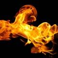 пожар в старомайнском районе