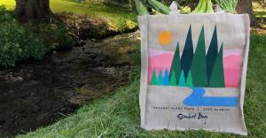 reusable compostable grocery shopping bag from stardust sustainables