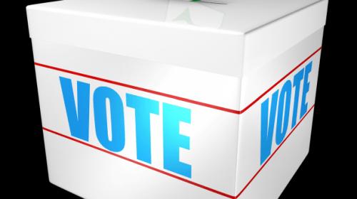 OUG pentru alegerile primarilor în două tururi este pe circuitul de avizare