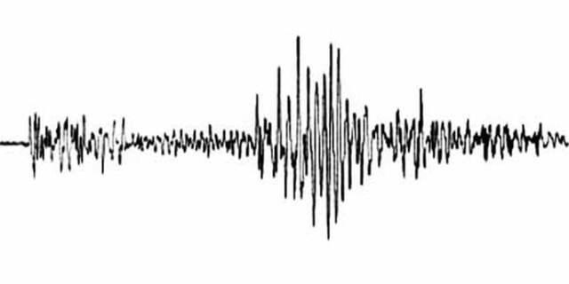 cutremure