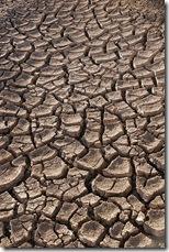 Dry earth in the Sonoran Desert, Sonora - Mexico (c) Tomas Castelazo