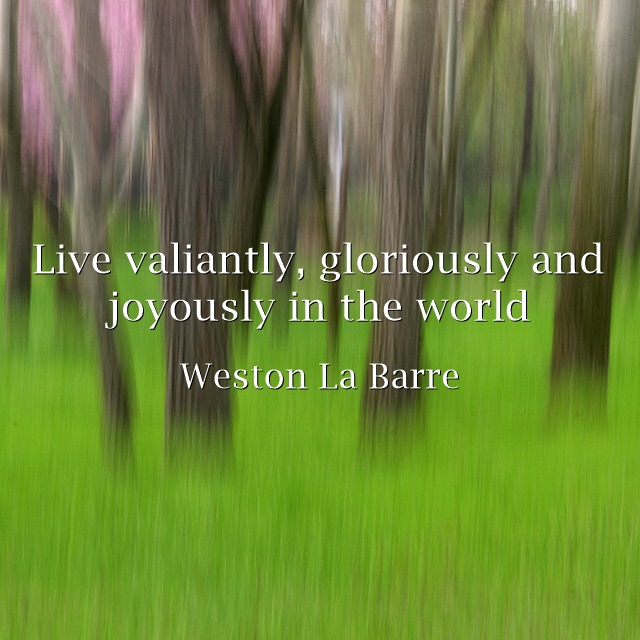 Live-valiantly