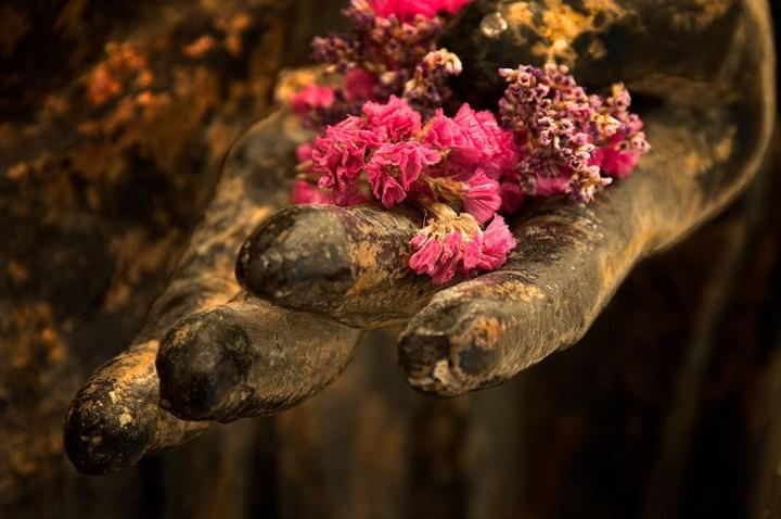 buddha-hand-flower